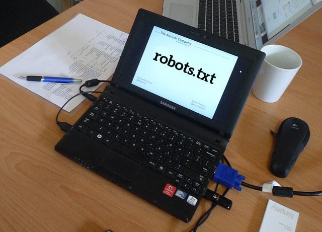 robots.txt do czego