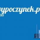 e-wypoczynek.pl-czy-warto