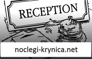 noclegi-krynica.net
