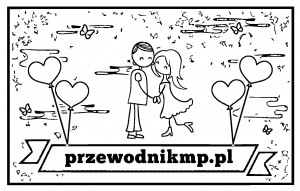 przewodnikmp.pl