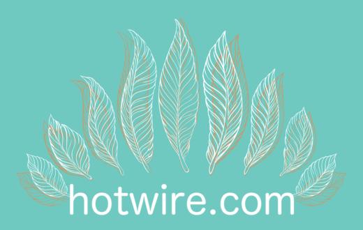 hotwire com