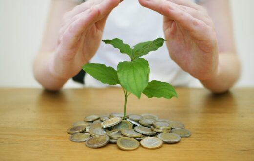 Aktywność inwestycyjna ożywiła się w drugim kwartale 2021 roku